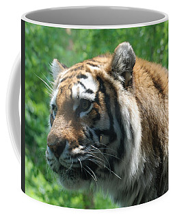 Coffee Mug featuring the photograph Tiger Profile by Richard Bryce and Family