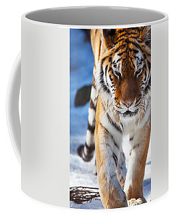Tiger Strut Coffee Mug by Karol Livote
