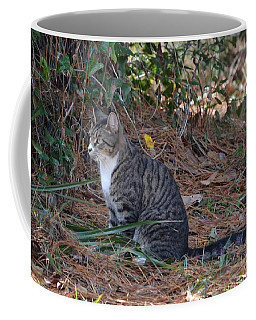 Tiger Tabby - Innocence Coffee Mug