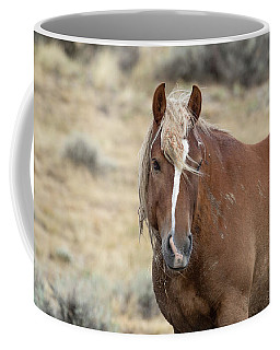 Coffee Mug featuring the photograph Tigress by Ronnie and Frances Howard