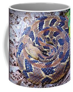 Timber Rattler Coffee Mug