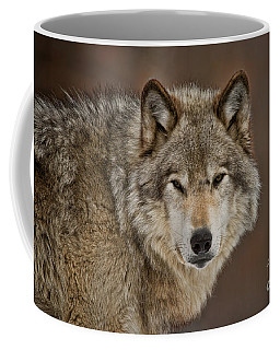 Timber Wolf Picture - Tw283 Coffee Mug