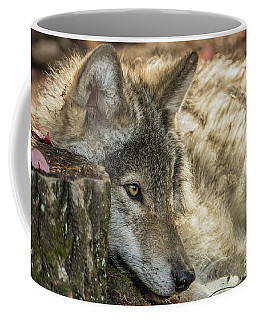 Timber Wolf Picture - Tw287 Coffee Mug