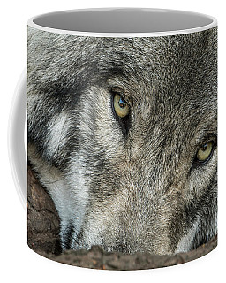 Timber Wolf Picture - Tw289 Coffee Mug