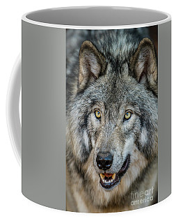 Timber Wolf Picture - Tw290 Coffee Mug