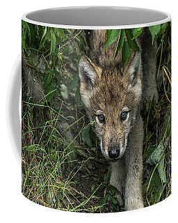 Timber Wolf Picture - Tw337 Coffee Mug