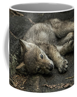 Timber Wolf Picture - Tw338 Coffee Mug