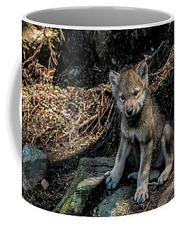 Timber Wolf Picture - Tw339 Coffee Mug