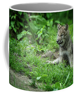 Timber Wolf Picture - Tw341 Coffee Mug