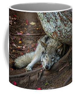 Timber Wolf Picture - Tw415 Coffee Mug