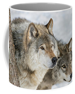 Timber Wolf Picture - Tw416 Coffee Mug
