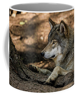 Timber Wolf Picture - Tw418 Coffee Mug