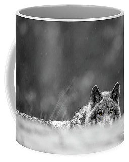 Timber Wolf Picture - Tw420 Coffee Mug