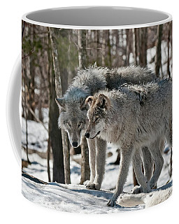 Timber Wolf Picture - Tw67 Coffee Mug