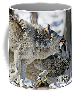 Timber Wolf Picture - Tw68 Coffee Mug