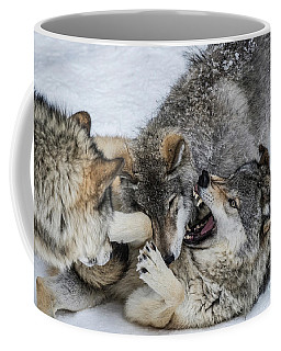 Timber Wolf Picture - Tw71 Coffee Mug