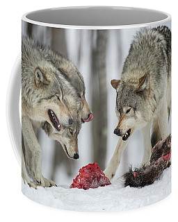 Timber Wolf Picture - Tw72 Coffee Mug