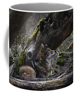 Timber Wolf Coffee Mug by Randy Hall