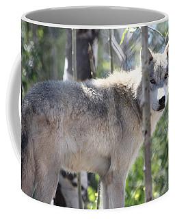 Timber Wolf Coffee Mug