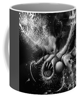 Coffee Mug featuring the digital art Time Aerials Squamafly by Russell Kightley