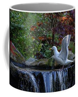 Time For A Bird Bath Coffee Mug by Keith Boone