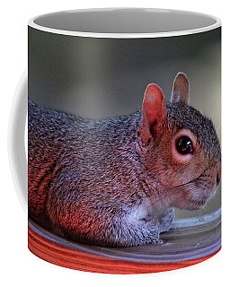 Coffee Mug featuring the photograph Time For A Rest by Trina Ansel