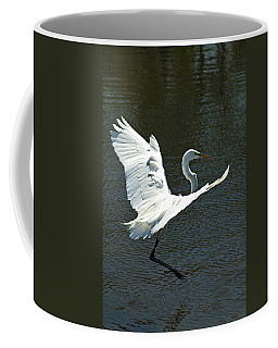 Coffee Mug featuring the photograph Time To Land by Carolyn Marshall