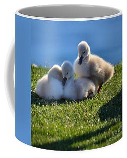 Time To Snuggle Coffee Mug by Deb Halloran