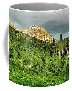 Timpanogos Coffee Mug