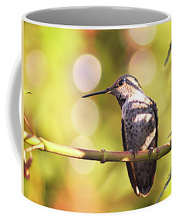 Tiny Bird Upon A Branch Coffee Mug