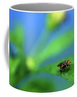 Tiny Fly On Leaf Coffee Mug