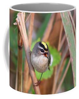 Tiny Golden-crowned Kinglet Coffee Mug