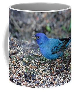 Tiny Indigo Bunting Coffee Mug