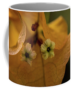 Coffee Mug featuring the photograph Tiny Tree Flowers by Jay Stockhaus