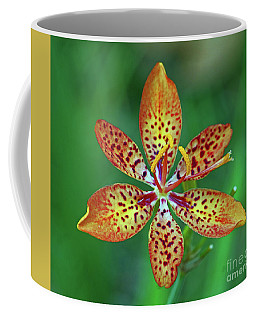 Tiny Tropical Lily Coffee Mug