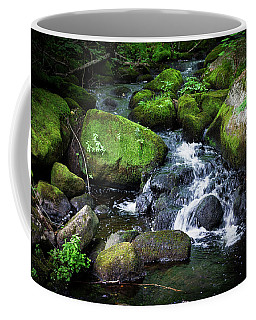 Tiny Waterfall - Ellsworth Maine Coffee Mug