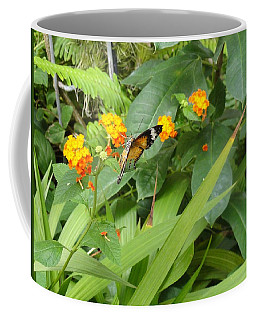 Butterfly Tipping Over Gold Flowers Coffee Mug