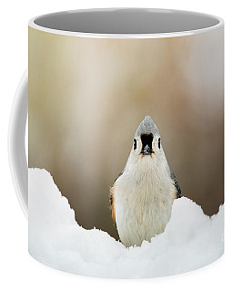 Tufted Titmouse In Snow Coffee Mug