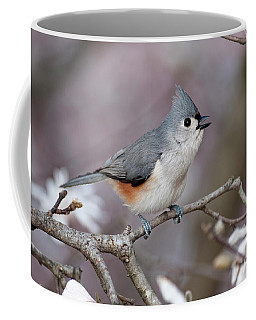 Titmouse Song - D010023 Coffee Mug by Daniel Dempster