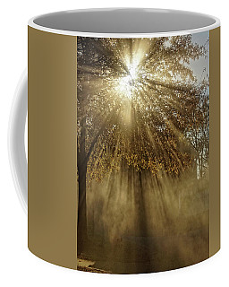 To Catch A Ray Of Sunlight Coffee Mug