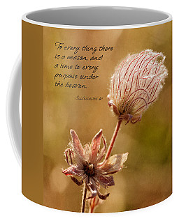 Coffee Mug featuring the photograph To Everything A Season by Mary Jo Allen