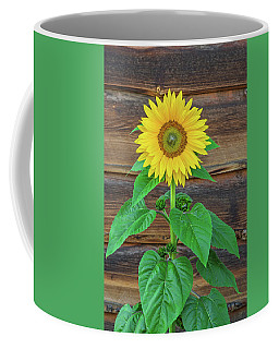 To Love And Be Loved Is To Feel The Sun From Both Sides.  Coffee Mug