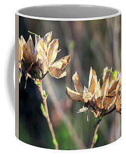 Coffee Mug featuring the photograph Toasted by Melinda Blackman
