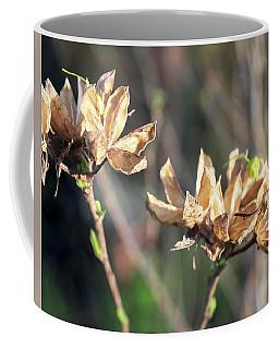 Toasted Coffee Mug