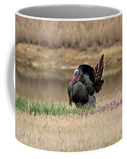 Tom Turkey At Pond Coffee Mug