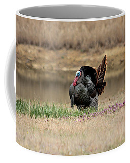 Tom Turkey At Pond Coffee Mug