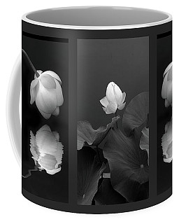 Coffee Mug featuring the photograph Tonal Study Triptych by Jessica Jenney