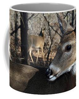 Too Cool Coffee Mug by Bill Stephens