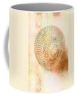 Top Down View Of Spiral Sea Shell Coffee Mug