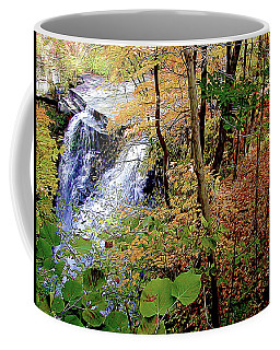 Top Of The Falls Coffee Mug